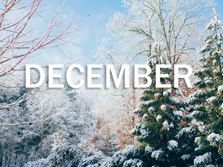 Decembrie 2019